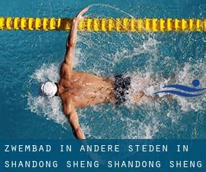 Zwembad in Andere steden in Shandong Sheng (Shandong Sheng)